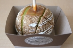 Rocky Mountain Chocolate Factory candied apple